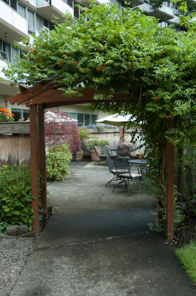 Lush entrance into our patio area