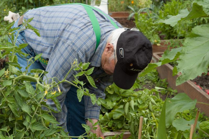 Resident Gardener